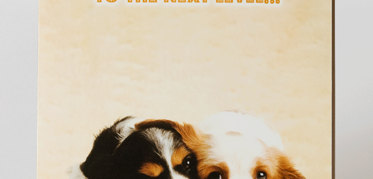 Gift card featuring two cute puppies